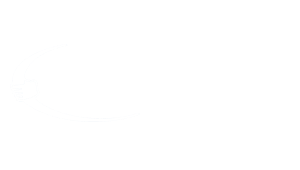 the handrail people